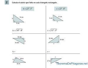 calcular cateto